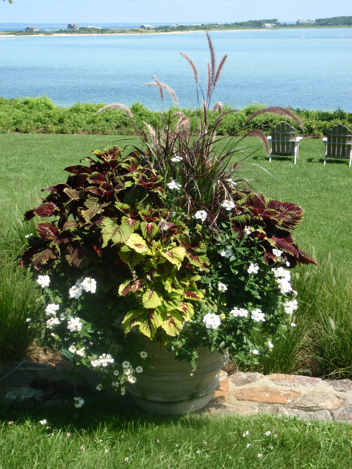 plant containers marthas vineyard